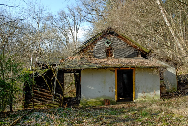 2008-02-25 D200 Wächtersbach Wald Abrisshaus 004